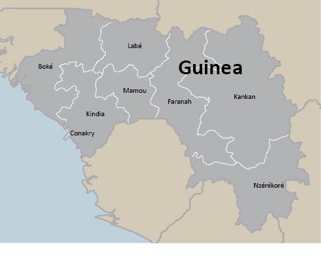 MC_Guinea_WordColumnSize_rev01